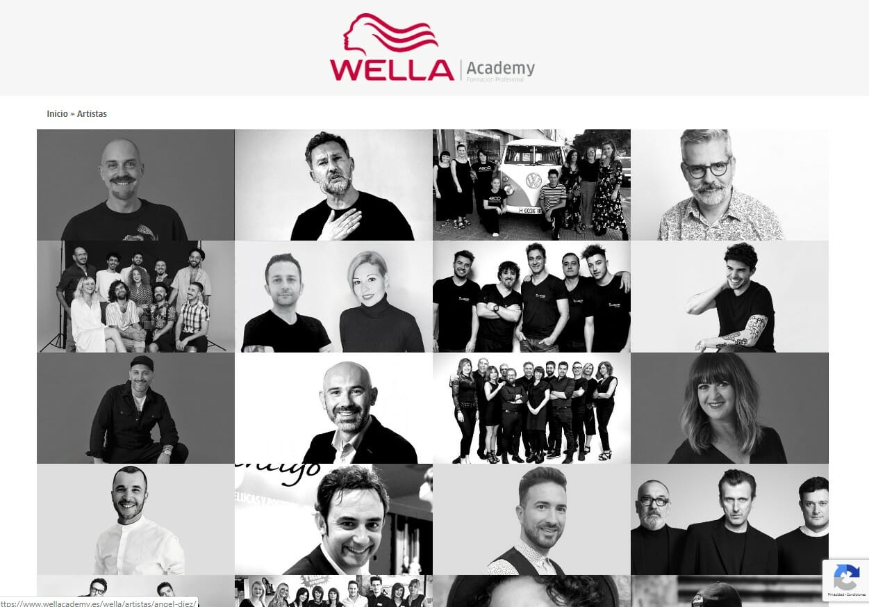 Desarrollo web Wella Academy Artistas