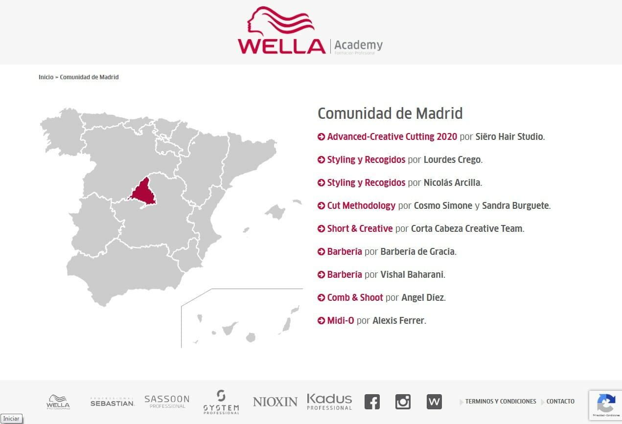Desarrollo WEB Wella Academy