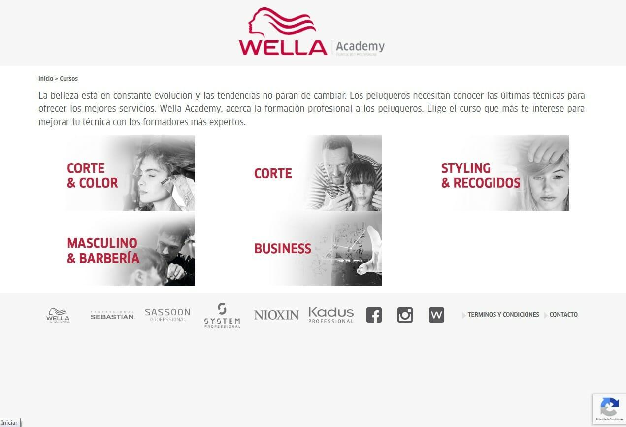 Desarrollo WEB Wella Academy Cursos
